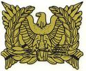 Special Forces Warrant Officer Decal