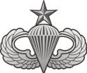 Senior Jump Wings - Silver Decal