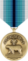 Coast Guard Arctic Service Medal Decal