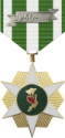 Vietnam Campaign Medal Decal