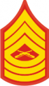 E-8 MSGT Master Sergeant (Gold)  Decal