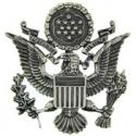 Air Force Officer Hat Badge