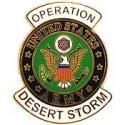 Desert Storm Army Pin