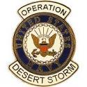 Desert Storm Navy Pin