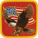 Eagle and Flag Patch