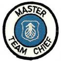 Air Force Master Team Chief Patch
