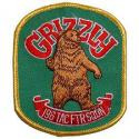 Air Force Grizzlys 196th TFS Patch