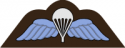 RAF Airborne Wings Decal