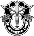 Special Forces Crest Decal