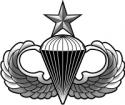 Senior Jump Wings - Gray  Decal