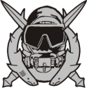 Special Operations Diver Decal