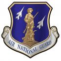 Air National Guard All Metal Sign 15 x 15""
