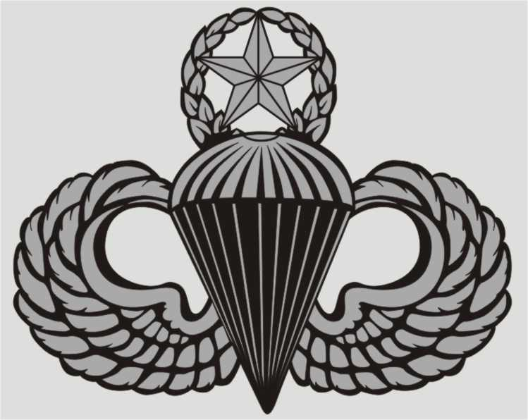 Army Para Wing Basic Decal
