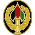 Combat Service Identification Badge, Special Ops Joint Task Force Afghanistan
