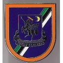 Task Force 160 Night Stalkers Pin