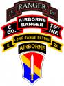 1st Field Force Vietnam Combo Decal