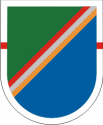 75th Ranger Regiment 1st Battalian Flash - Obsolete