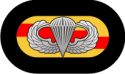 75th Ranger Oval with Jump Wings - 2  Decal