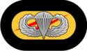 75th Ranger Oval with Jump Wings Decal