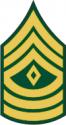Army E-8 1SG First Sergeant