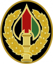 Combat Service Identification Badge, Special Operations Joint Task Force Afghani