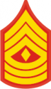 E-8 1SGT First Sergeant (Gold) Decal