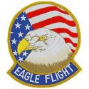 Air Force Eagle Flight Patch