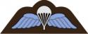 RAF Airborne Wings Decal