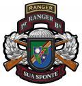"1st Ranger Battalion Combo  Metal Sign-  All Metal Sign 16 x 17"""