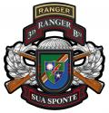 "3rd Ranger Battalion Combo  Metal Sign-  All Metal Sign 16 x 17"""