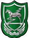 10th Special Forces  Group (Trojan)  all metal Sign  12  x 17""